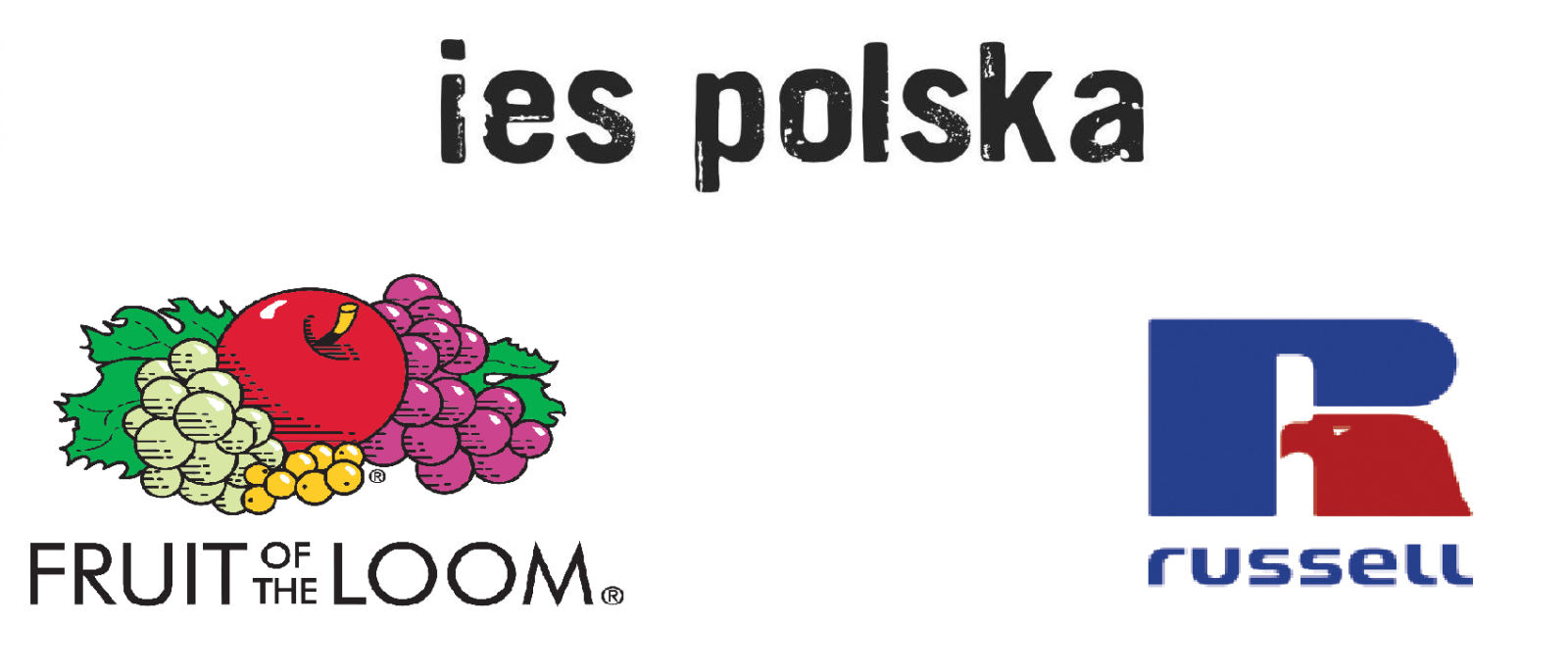 fruit of the loom, russell, ies polska